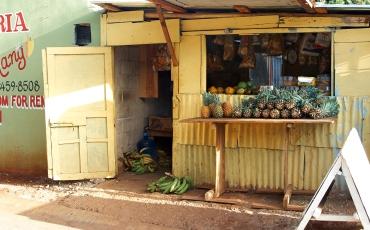 Piña Store